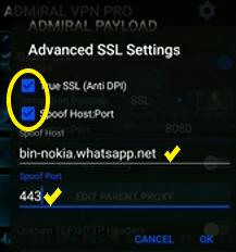 VPN pro acceso CNT Lte